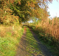 Access path to Heriot Toun Studio